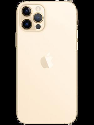 iPhone 12 Pro Max 256 GB (Ոսկեգույն) photo