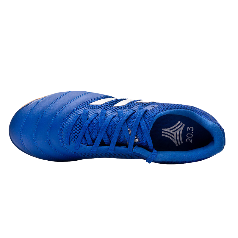 Adidas Copa 20.3 Royal Blue-Silver photo