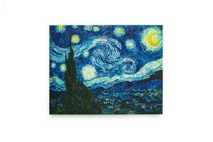 Վինսենթ վան Գոգ «Աստղալից գիշեր» AF073