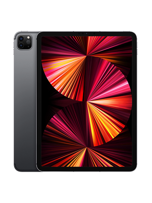 iPad Pro FD 11 2021 256 GB LTE (Серый)