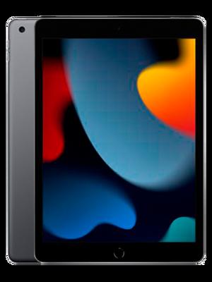 iPad 10.2 2022 256 GB WIFI (Մոխրագույն)